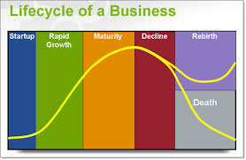 business life cycle